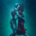 13 Dalda Oscar Adayı: The Shape of Water