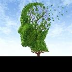 Bu Bitkiler Hafızayı Güçlendiriyor