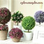 Çiçek Yetiştirmenin Faydaları