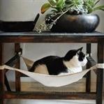 Evcil hayvanlar için kendin yap fikirleri