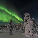 Finlandiya'da Eğitim ve Yaşam