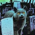 Hayvan Mezarlığı (Pet Sematary) |Kitap Yorumu