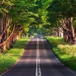 Her Seyahat Severin Okuması Gereken 10 Kitap