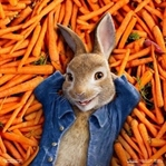 Peter Rabbit / Tavşan Peter