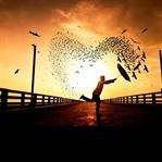 Adrenalinden Mutluluğa Giden Yol