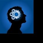 Egzersizler ve Beynimiz