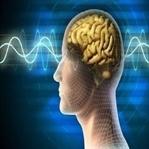 Neden Beynimizin Tamamını Kullanamıyoruz?