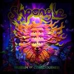 Shpongle- Alternatif Bir Müzik Önerisi