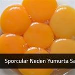 Sporcular Neden Yumurta Sarısı Yemez