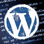 En yaygın 5 WordPress problemine çözüm
