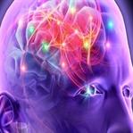 Epilepsi Belirtileri, Nedenleri Ve Tedavisi