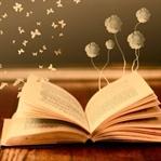 Okumak Üzerine