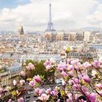 Paris'e Gitmiş Kadar Olmak