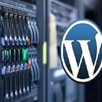 WordPress Site Yedekleme Yedekleme Yöntemleri