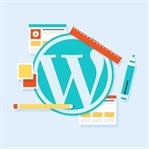 WordPress'te Kullanılması Gereken Eklentiler