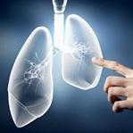 Akciğer Kanseri için Bitkisel Kür