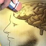 Alzheimer için Bitkisel Kür Önerisi