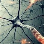 Biorezonans Tedavisi Nedir?