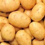 Patatesin Sağlığa Faydası Nedir ?