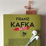 Franz Kafka - Şato Kitabı