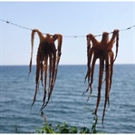 Midilli Adası Gezi Notları