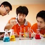 Singapur'da Eğitim Sistemi Nasıl Başarılı?