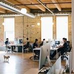 Startup Nedir, Nasıl Girişimci Olunur?