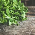 Yeşil Yapraklı Sebzelerin 11 Sağlık Faydası