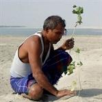 36 Yılda 550 Hektarlık Orman Yaratan Adam