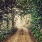 Aşkın Yaşandığı Yol Hangi Zamanda Gizlidir?