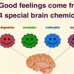 Vücutta Gönderilen Mektup:Nörotransmitter