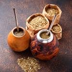 Yerba Mate Çayı