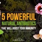 Bağışıklığınızı Artıracak Doğal Antibiyotikler