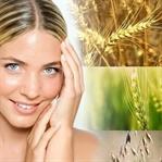 Buğday Tohumu Yağı ve Cilt İçin Faydaları
