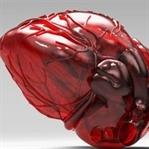 En İlginç 3D Yazıcı Ürünleri