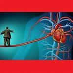 Kalp - Damar Hastalıkları