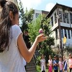 Karadeniz'in İlk ve Tek Yaşayan Müzesi Ünye'de