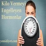 Kilo Vermeyi Engelleyen Hormonlar