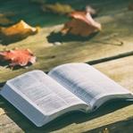 Ölmeden Önce Okunması Gereken 4 Kitap Önerisi