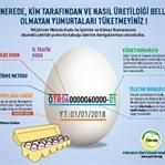 Yumurtanın kodu 3 ile başlıyorsa dikkat!