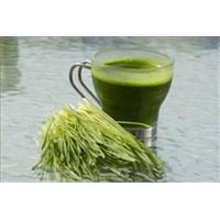 Buğday Çimi Suyunun Faydaları Nelerdir?