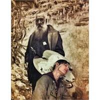 Monet'nin Bahçesinde Gezerken