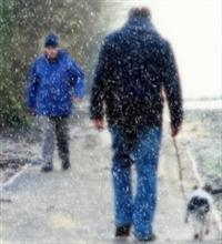 Soğuk Havanın Hayvanlar Üzerindek Etkisi