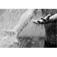 Yağmur II