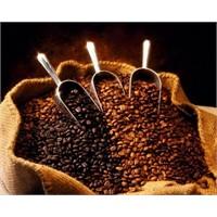Güzel Kahve Nasıl Pişirilir?