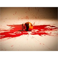 Nar Ve Kabuktan Sızan Kan