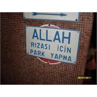 Bir İstanbul Gezintisi