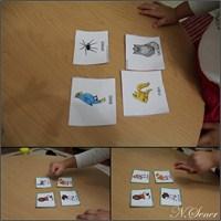 3-6 Yaş İngilizce Öğrenme