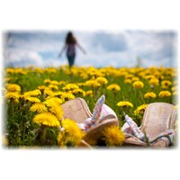 Daha Mutlu Yaşamak İçin Vazgeçmen Gereken 5 Şey