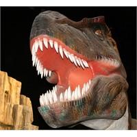 Jurassic Land'de Neler Var, Jurassic Land Yorumlar